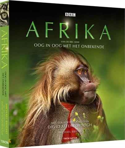 afrika-bbc