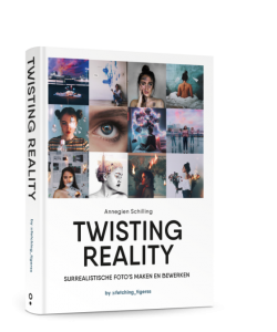 Annegien Schilling - Twisting reality